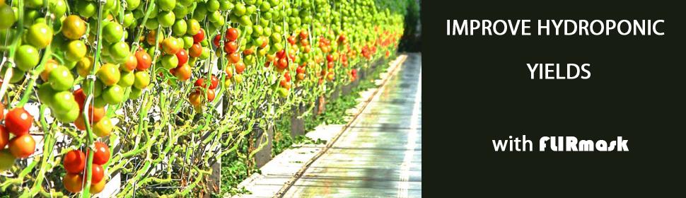 hydroponic grow film